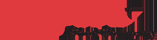 Simpson Door Company logo in color