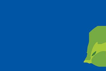 Rmax logo in color